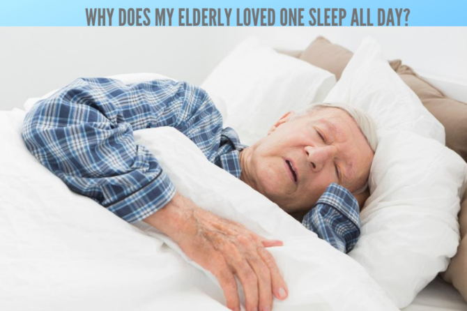 Why Does My Elderly Loved One Sleep All Day?