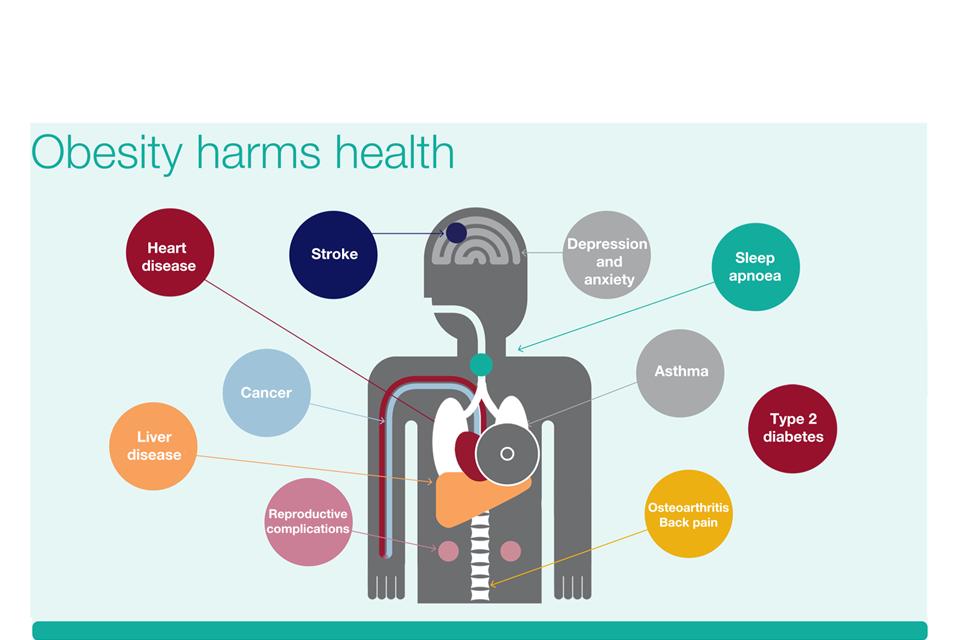 Obesity harms health