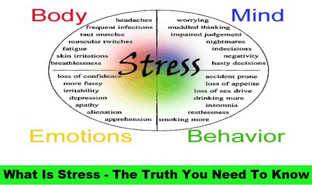 What is Stress – The Truth You Need to Know